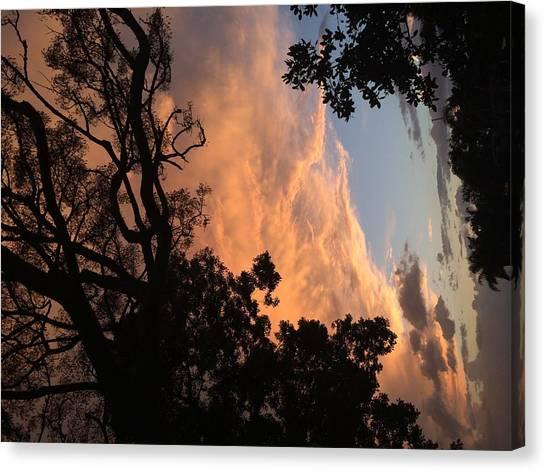 Side Sky Canvas Print