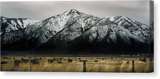 Sierra Nevada Mountains Near Lake Tahoe Canvas Print