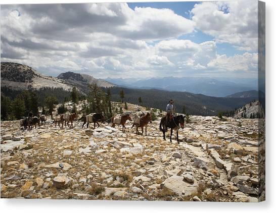 Sierra Trail Canvas Print