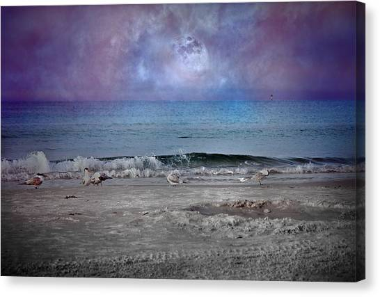 Tumbling Canvas Print - Siesta Key Moon In My Pocket by Betsy Knapp