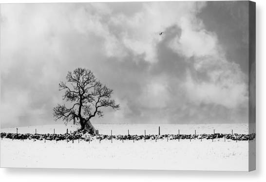 Sign Of Winters End Canvas Print
