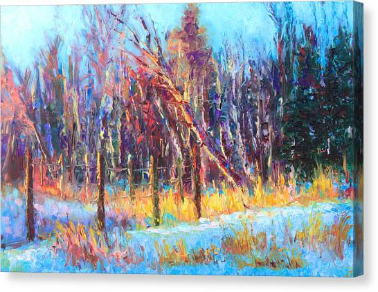 Signs Of Spring - Trees And Snow Kissed By Spring Light Canvas Print