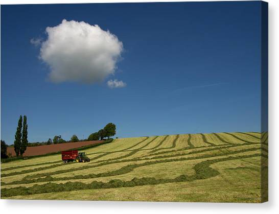 Silage Collection Canvas Print