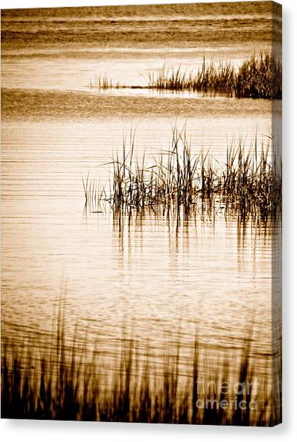 Silence Canvas Print by Q's House of Art ArtandFinePhotography