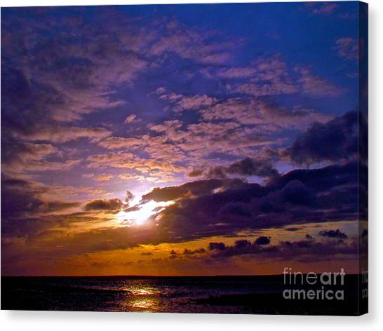 Silent Stride Of Earth Canvas Print by Q's House of Art ArtandFinePhotography