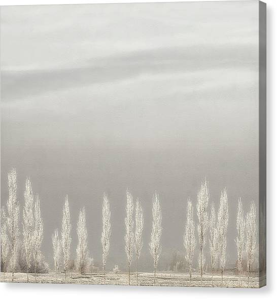 Frost Canvas Print - Silent World by Yvette Depaepe