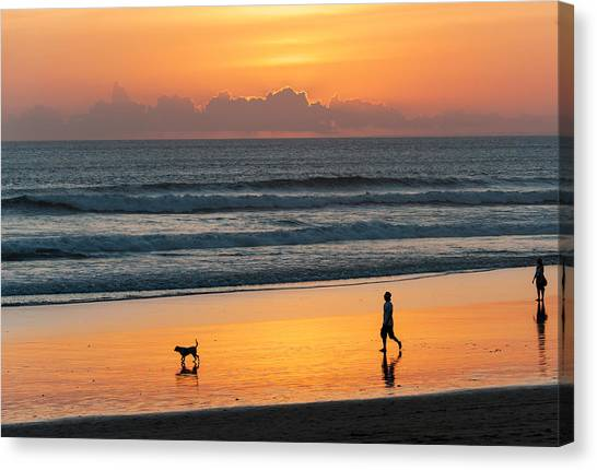 People Walking On Beach Canvas Print - Silhouette Of People And Dog Walking by Panoramic Images