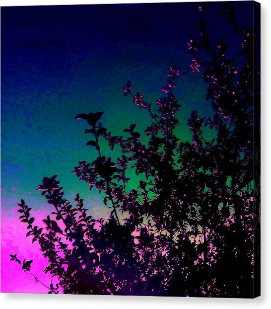 Apple Tree Canvas Print - Silhouette Tree by Candy Floss Happy
