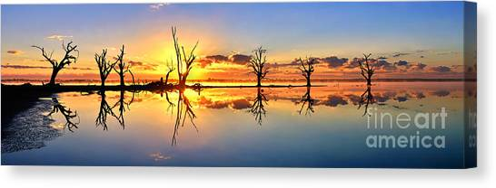 Silhouetted Sential Sunset Canvas Print