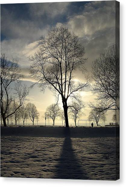 Silhouettes And A Long Winter Shadow  Canvas Print