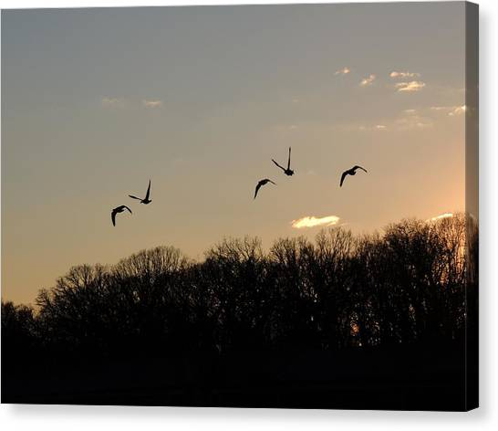 Silhouettes At Dusk Canvas Print