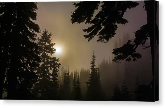 Silhouettes Of Trees On Mt Rainier II Canvas Print