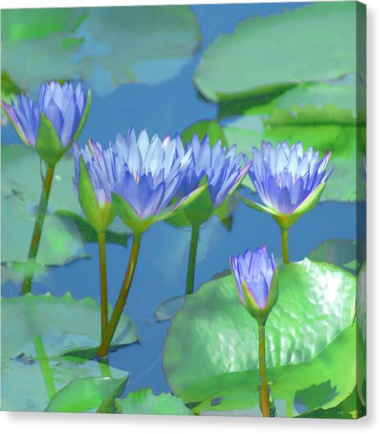 Silken Lilies Canvas Print