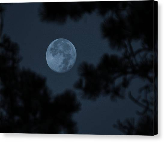 Canvas Print featuring the photograph Silver Cast Of Harvest Moon by Jeremy McKay