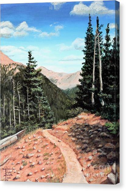 Silver Dollar Trail Colorado Canvas Print