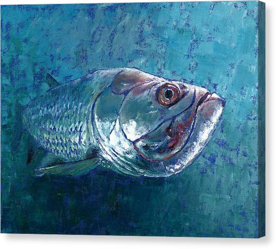 Silver King Tarpon Canvas Print