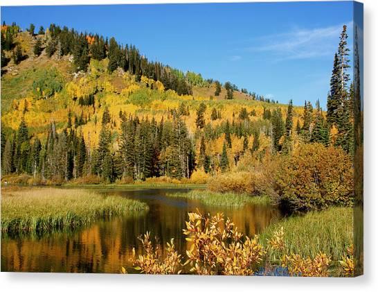 Silver Lake Canvas Print