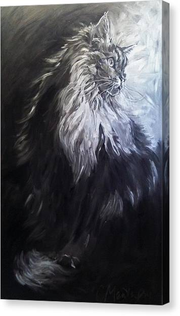 Main Coons Canvas Print - Cat Portrait Painting. Big Cat Series Silver Light by Christine Montague