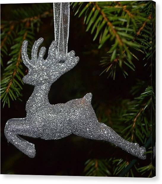 Presents Canvas Print - Silver Rudolph. by Eve Tamminen