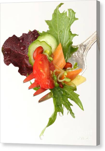 Lettuce Canvas Print - Silver Salad Fork by Iris Richardson