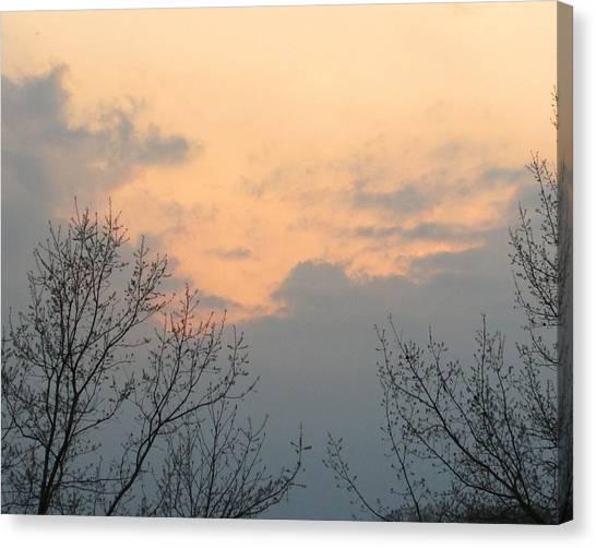 Silver Springs Sky Canvas Print by Jaime Neo
