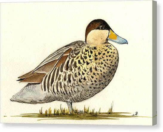 Ducks Canvas Print - Silver Teal by Juan  Bosco