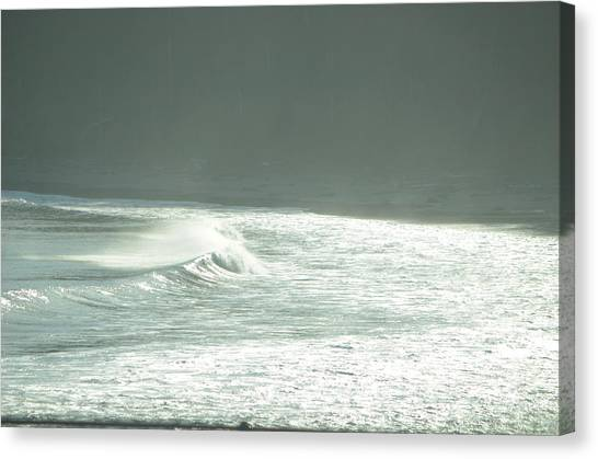 Silver Wave Canvas Print