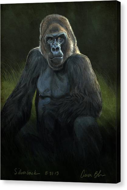 Apes Canvas Print - Silverback by Aaron Blaise