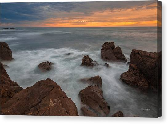 Silverlight-cambria Canvas Print