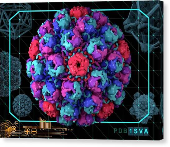 Simian Virus 40 Canvas Print by Laguna Design/science Photo Library