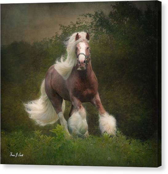 Equine Canvas Print - Simon And The Storm by Fran J Scott