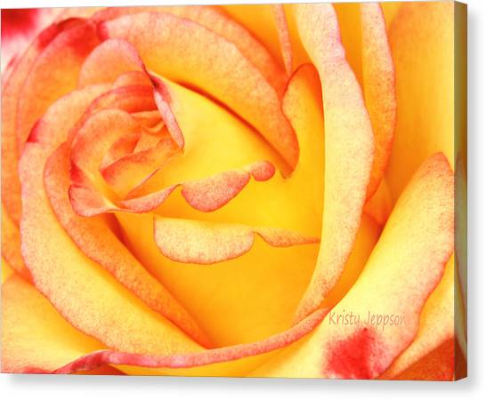 Simple Rose 2 Canvas Print