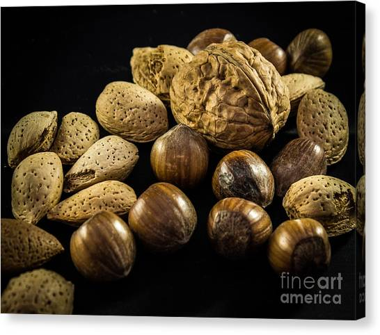 Simply Nuts Canvas Print