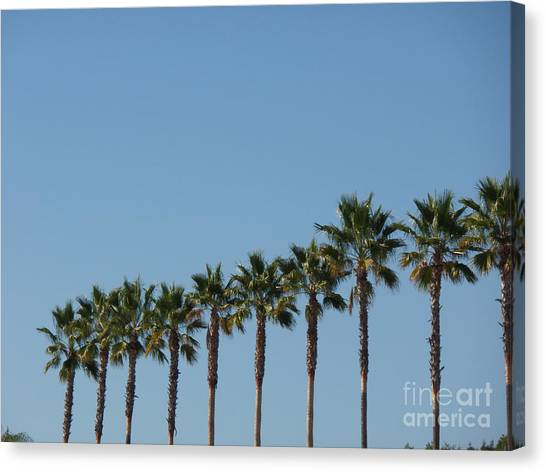 Simply Palms Canvas Print