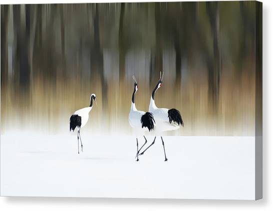 Cranes Canvas Print - Sing A Song Of Love by Ikuo Iga