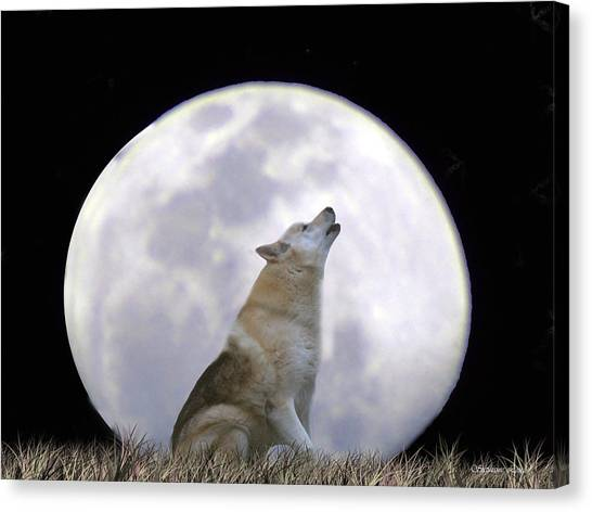 Wolf Moon Canvas Print - Singing Moon by Stephanie Laird