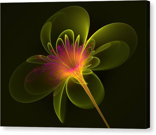 Single Flower Canvas Print