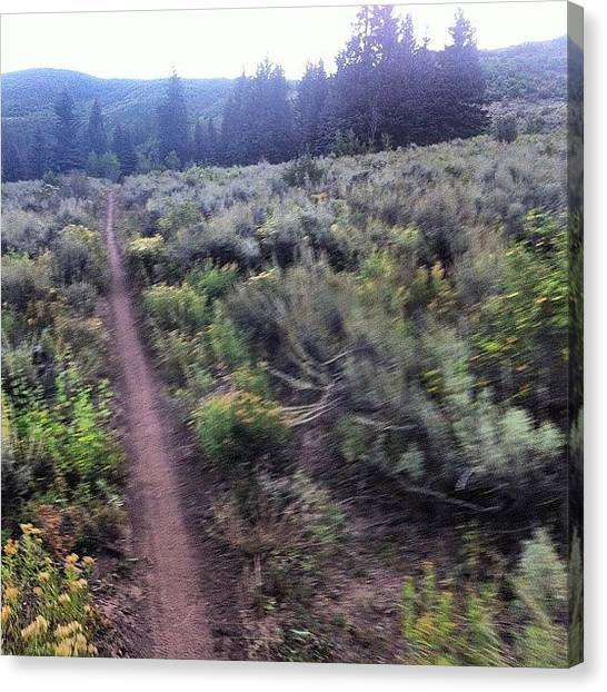 Saddles Canvas Print - #singletrack From The #saddle by Andrew Wilz