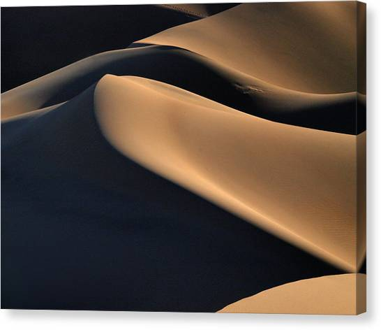Arabian Desert Canvas Print - Sinuous Dunes  by Joe Schofield