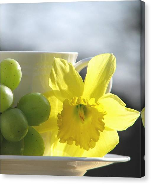 Sipping Spring Canvas Print