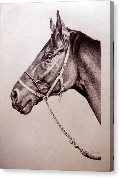 Sir Alfred 2 Canvas Print by Patricia Howitt