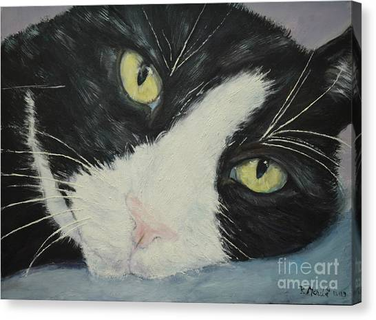 Sissi The Cat 1 Canvas Print