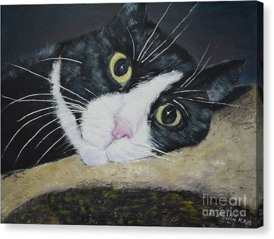 Sissi The Cat 3 Canvas Print