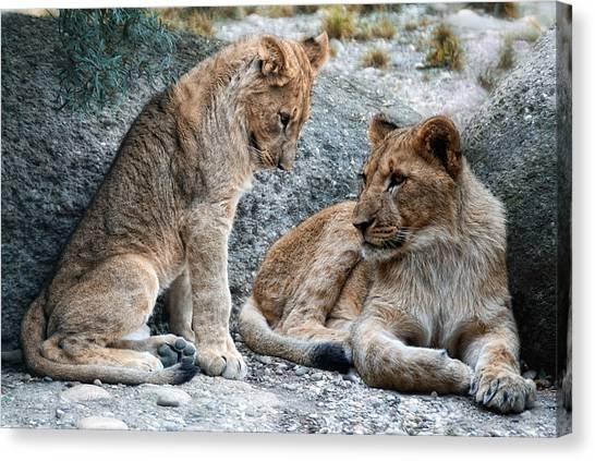 Big Sister Canvas Print - Sister And Brother by Joachim G Pinkawa