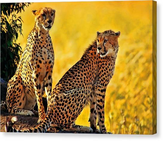 Sister Cheetahs Canvas Print