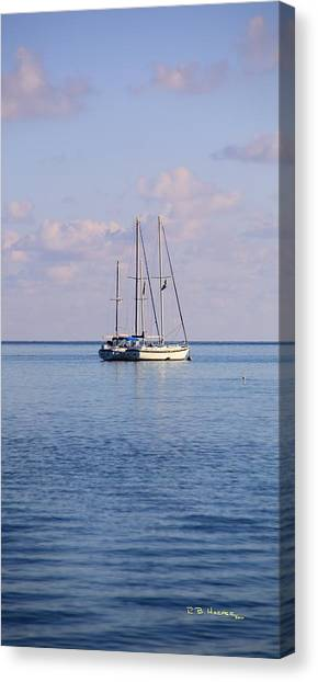 Canvas Print featuring the photograph Sister Ships by R B Harper