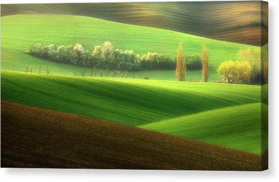 Free Canvas Print - Sisters... by Krzysztof Browko