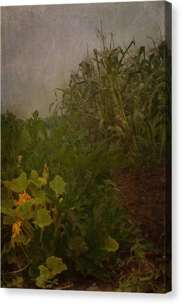 Vegetable Garden Canvas Print - Sisters by Susan Capuano