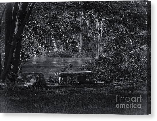 Sit And Ponder Canvas Print