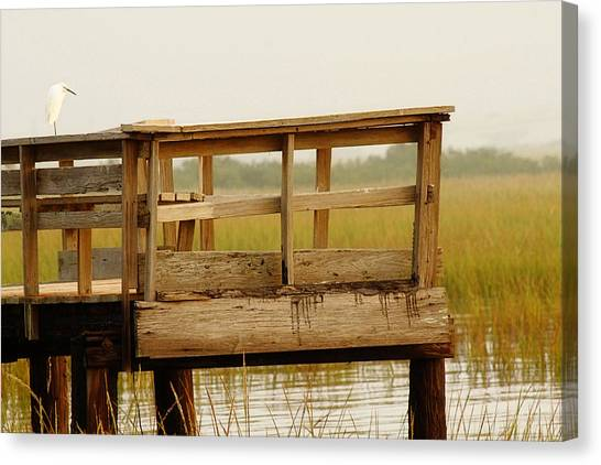 Everglades Canvas Print - Sitting On The Dock by Rebecca Cozart